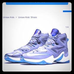 Labron James shoes nikes